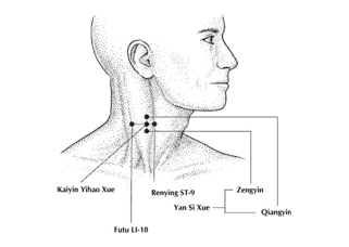 This is ment to showcase the Natural Treatment for Spasmodic Dysphonia