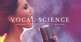 Article – Psychological aspects of Voice Disorders