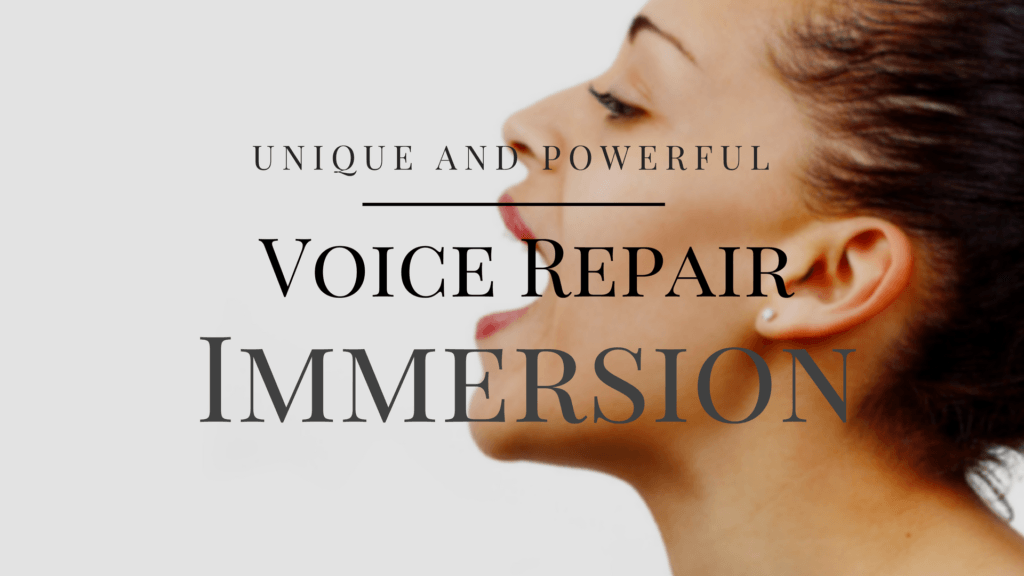 Voice-Repair-Immersion