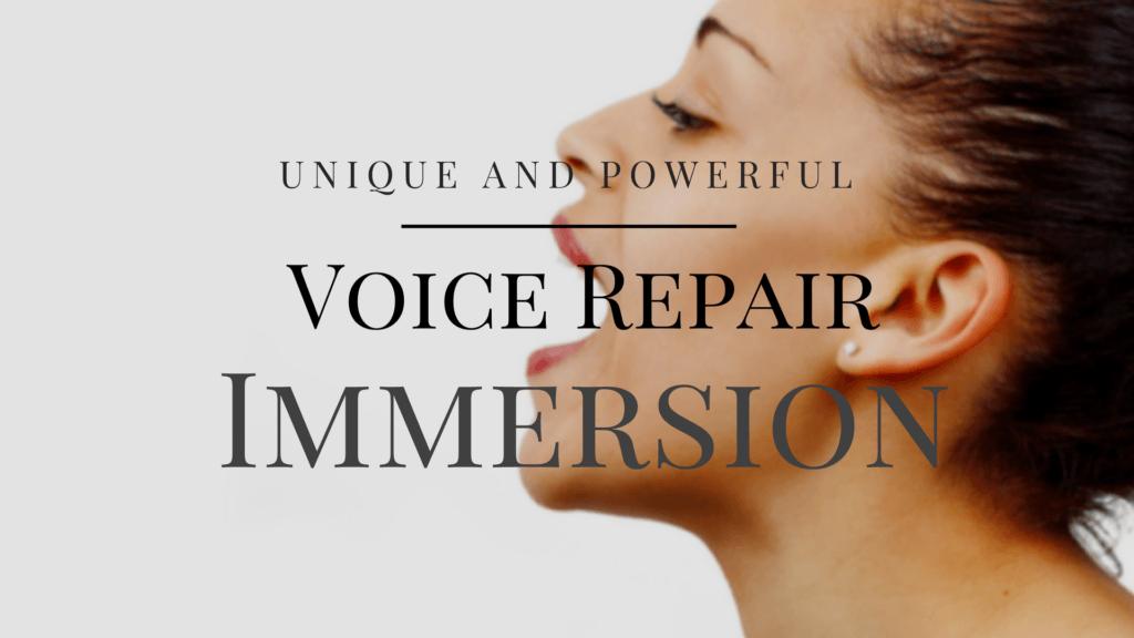 Voice-Repair-Immersion